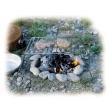 Relags Basic Folding összecsukható grillrács